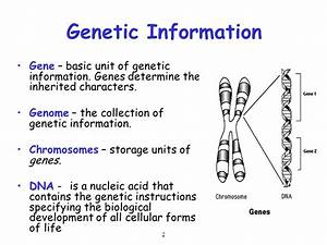 Basic Concepts In Genetics References