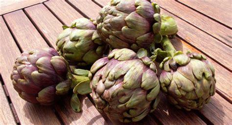 cuisiner les artichauts violets produits régionaux artichaut violet du roussillon