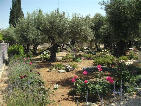Der Garten Gethsemane by Im Garten Gethsemane Tagebuch Der Pilgerfahrt 2010 Nach