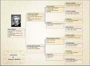 ancestry book templates - family tree maker embellish your charts ancestry blog
