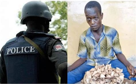 OGUN STATE POLICE ARREST MAN WITH OVER 300 WRAPS OF INDIA