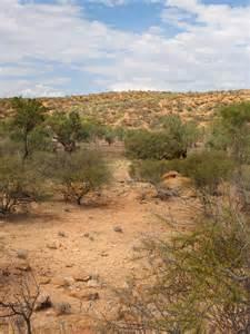 Desert Scrub Land