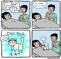 the cat doctor doctor cat doctor cat