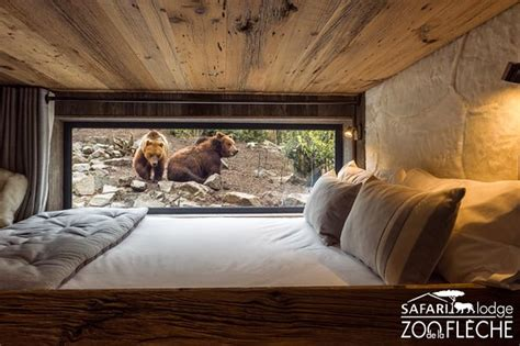chambre lodge safari lodge reviews la fleche tripadvisor