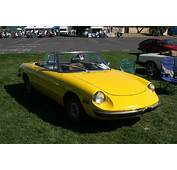 Alfa Romeo Spider Cars  News Videos Images WebSites Wiki
