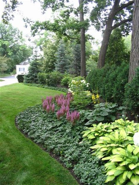 low maintenance plants outdoor 1000 ideas about low maintenance landscaping on pinterest landscaping front yards and low
