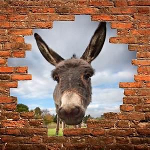 Image Trompe L Oeil : sticker mural trompe l 39 oeil ane art d co stickers ~ Melissatoandfro.com Idées de Décoration