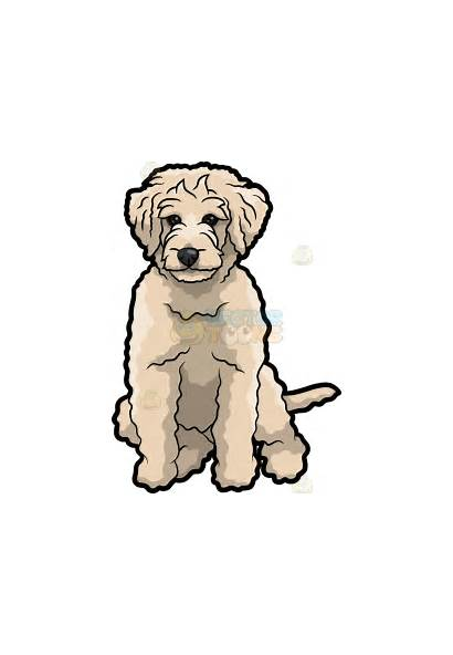 Goldendoodle Labradoodle Clipart Dog Cartoon Clip Puppy