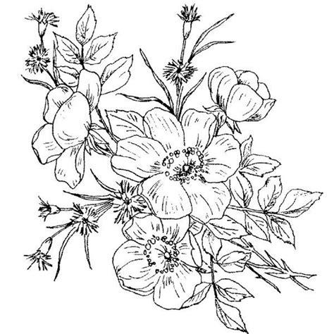 black  white wild rose tattoo google search wild