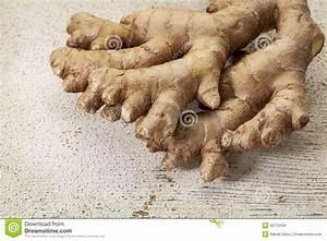 Racine De Gingembre : racine de gingembre images libres de droits image 30772039 ~ Melissatoandfro.com Idées de Décoration