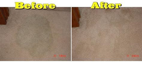 Carpet Before-after.jpg From Ameraclean Denver Carpet Cleaning In Denver, Co 80231 Carpet Importers In America Best Low Cost Cleaner Consumer Reports 2018 Make Flying Costume Zerorez Cleaning Omaha Ne How To Clean Using Rug Doctor Hoover Steam Manual Airflex Pro Machine Reviews
