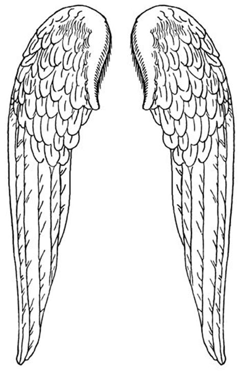 68 best Design - Drawing Wings images on Pinterest | Tattoo ideas, Angel wing tattoos and Angel
