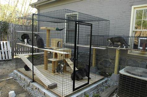 cage pour chat exterieur patios para gatos seguros y confortables de hogarmania
