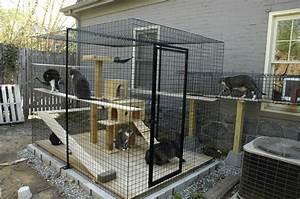 Construire Enclos Pour Chats : patios para gatos seguros y confortables blog de hogarmania ~ Melissatoandfro.com Idées de Décoration