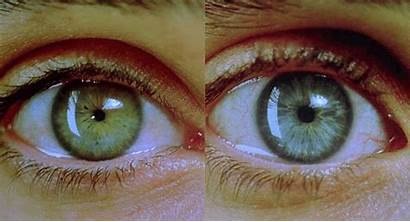 Fact Pupils Super Dilate Muscles Controls Eyes
