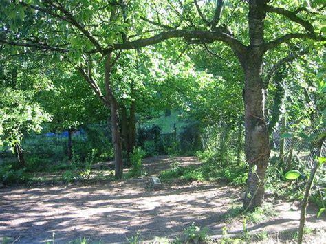 Garten Kaufen Stuttgart Hedelfingen by Offenstall In Gro 223 Em Garten F 252 R Ein Kleines Pferdchen Im