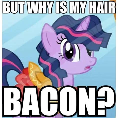 My Little Pony Know Your Meme - 17 best images about mlp on pinterest rainbow dash twilight sparkle and my little pony