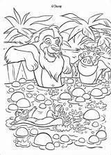 Simba Timon Spring Coloring Tub Lion King Pumbaa Hellokids Disney sketch template