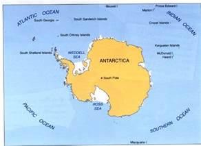Antarctica Animals and Plants