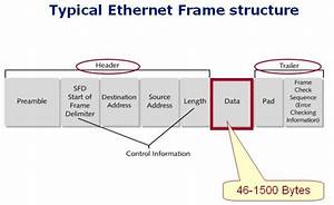 Diagram Illustrating Structure Of An Ethernet Frame  From Network  Textbook
