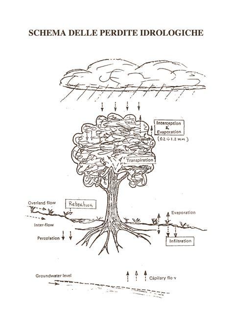 idrologia dispense piogge brevi infiltrazione e perdite dispense