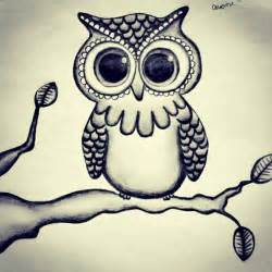 Drawing Owl Black and White