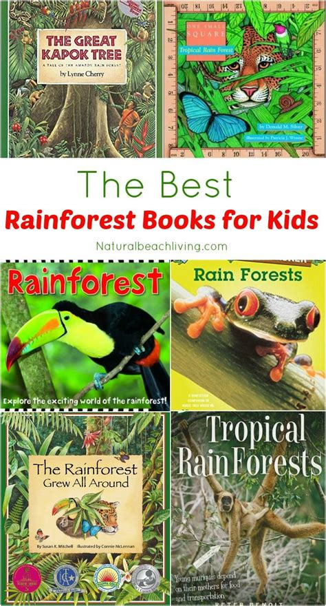 jungle animals preschool the 25 best rainforest climate ideas on 132
