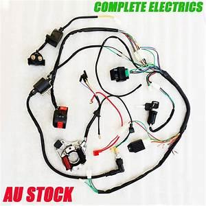 Complete Electrics Atv Quad 50cc 70cc 110cc 125cc Coil Cdi Assembly Wire Harness