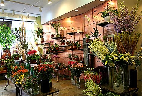 flower pictures flower shops