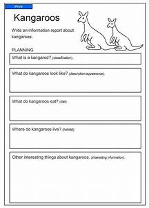 information report kangaroos english skills online With report writing template ks1