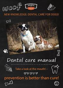 Dental Care Manual