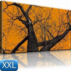 Bilder Natur Leinwand : horror bild auf leinwand baum natur bilder 100x55 xxl ebay ~ Markanthonyermac.com Haus und Dekorationen