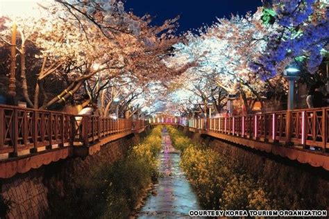 beautiful places  visit  south korea future
