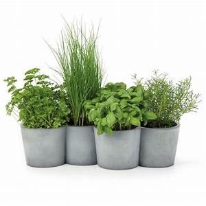 Herbes Aromatiques En Pot : jardini re design en b ton pot en b ton pour plantes ~ Premium-room.com Idées de Décoration