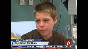 Boy, 11, bitten by shark off Ormond Beach