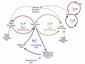 Aggregate Causal Loop Diagram Of Deforestation At The