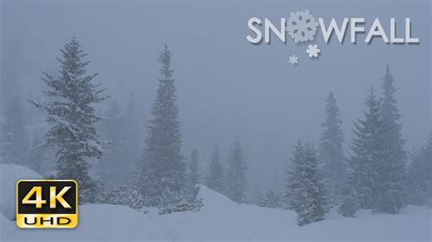 snowfall peaceful snowing snow falling relaxing