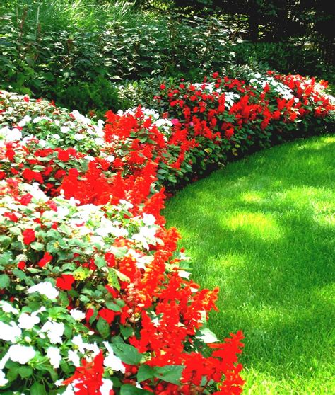 awesome front yard flower garden ideas  colourful