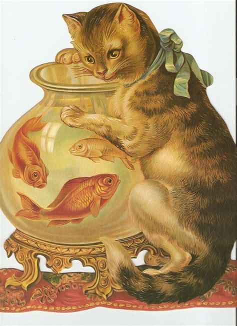 ideas  cut cat  pinterest kawaii cat cat