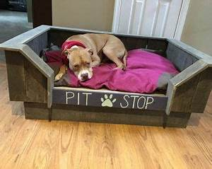 25 best ideas about elevated dog bed on pinterest pvc With pit stop dog bed