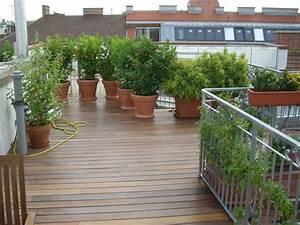 Pflanzen Für Dachterrasse : dachterrasse unsichtbar verschraubt in ipe bildergalerie ~ Michelbontemps.com Haus und Dekorationen