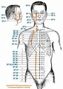 Stomach Channel Meridian Charts Pinterest