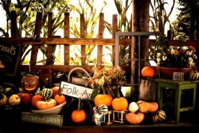 Halloween Pumpkin Fall Thanksgiving Autumn Wallpapers Pumpkins