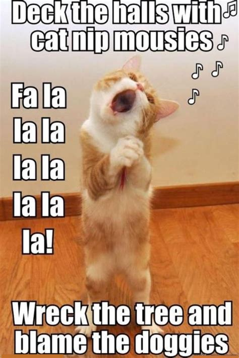Christmas Cat Memes - cat singing funny pictures quotes memes jokes