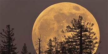 'Supermoon' on February 19th will be biggest and brightest of the entire year…