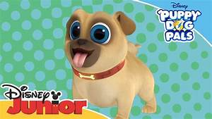 Puppy Dog Pals | Introducing Rolly! | Official Disney ...