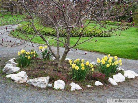 spring garden design  spring flower beds  yard landscaping ideas