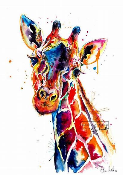 Giraffe Colorful Watercolor Painting