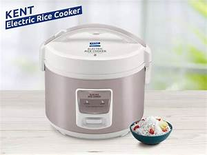 Electric Rice Cooker Buying Guide: Choose The Best One