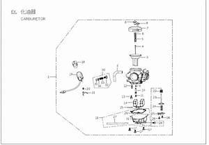 Buddy 125 Carburetor